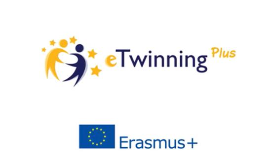 e_twinning